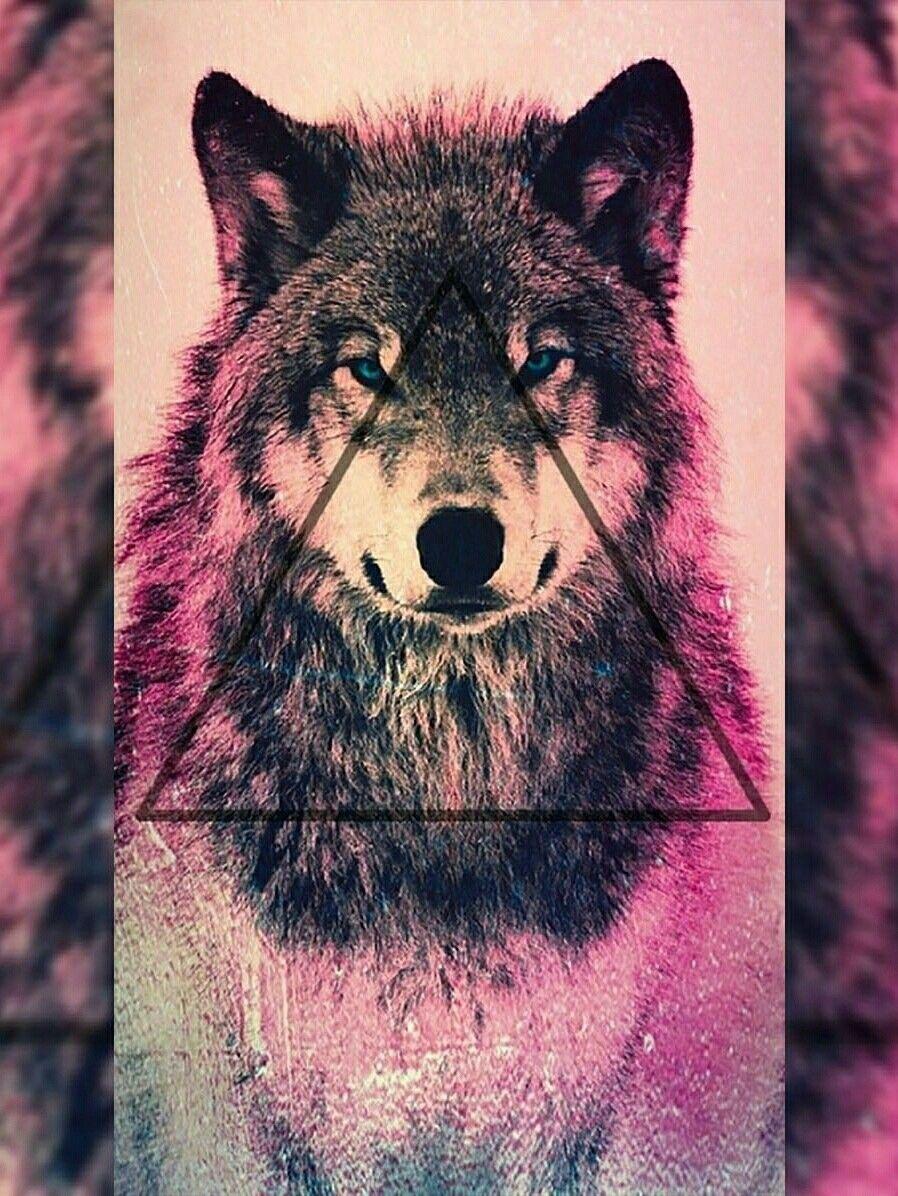 wallpapertapeta wolfwilk wallpaperwolftapetawilk
