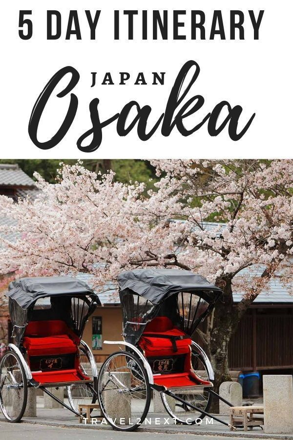 The Ultimate Osaka Itinerary: 5 Days. If youre only spending one day in Osaka, it might be difficult to see cherry blossoms in your Osaka itinerary. #japan #osaka #itinerary #travel #travelguide #moderateclimate #cherryblossoms #spring #autumn