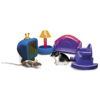 Kids Would Love This 11 99 Petco Hamster Living Room Set Pet Supplies Pets Diy Stuffed Animals
