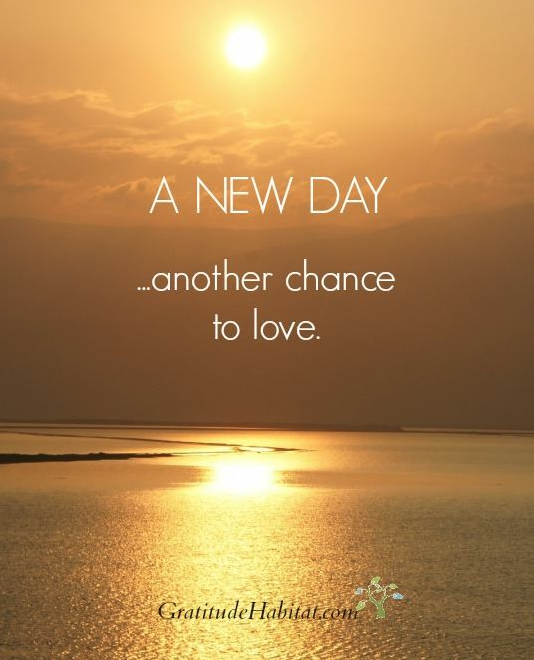 Each New Day Excited About Life Inspirational Humor Smile Quotes