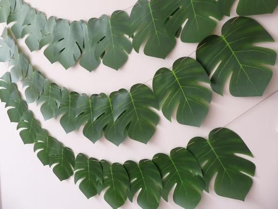 Palm Leaf Garland, Tropical, Jungle, Greenery Birthday, Baby Shower, Hen Party Decoration, Tropical Photo Prop #leafgarland Palm Leaf Garland Tropical Jungle Greenery Birthday Baby | Etsy #leafgarland Palm Leaf Garland, Tropical, Jungle, Greenery Birthday, Baby Shower, Hen Party Decoration, Tropical Photo Prop #leafgarland Palm Leaf Garland Tropical Jungle Greenery Birthday Baby | Etsy #leafgarland Palm Leaf Garland, Tropical, Jungle, Greenery Birthday, Baby Shower, Hen Party Decoration, Tropica #leafgarland