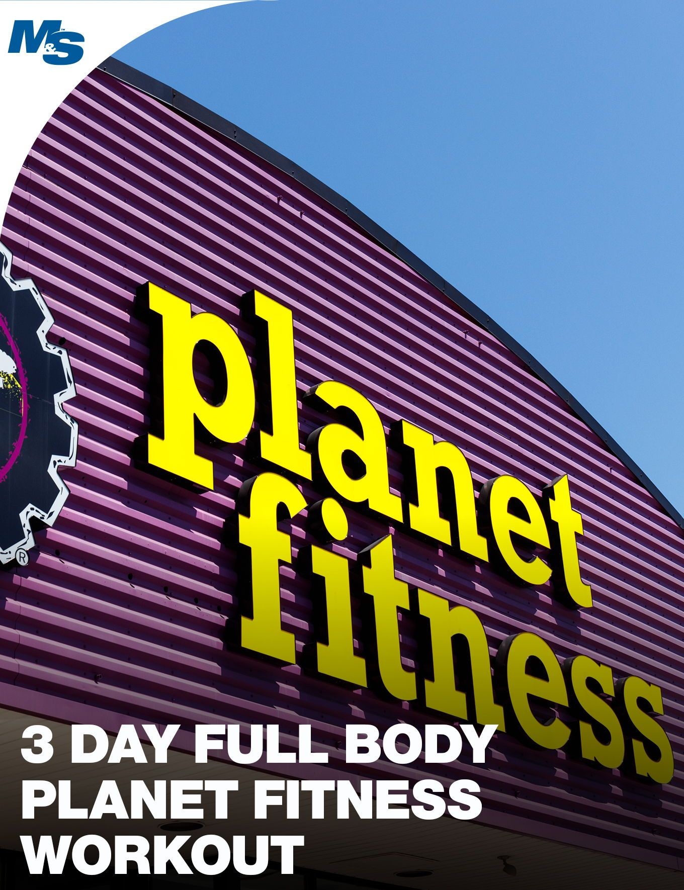 3 Day Full Body Planet Fitness Workout (Machines & Dumbbells Only)