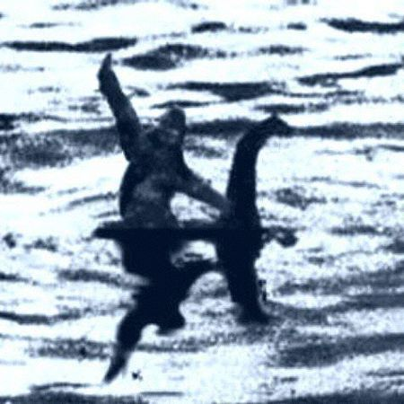 A rare photo of Bigfoot riding Loch Ness Nessie! Must be true, it's on the internet. Pie Grande, Lago Ness, Finding Bigfoot, Loch Ness Monster, Haha Funny, Hilarious, Funny Stuff, Random Stuff, Funny Memes