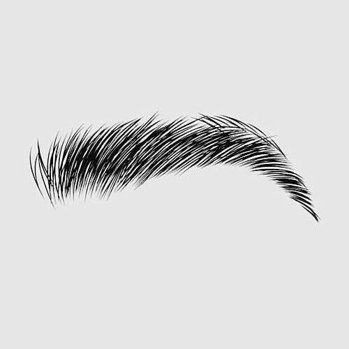 Photo of The architecture of eyebrows is the construction of the right …