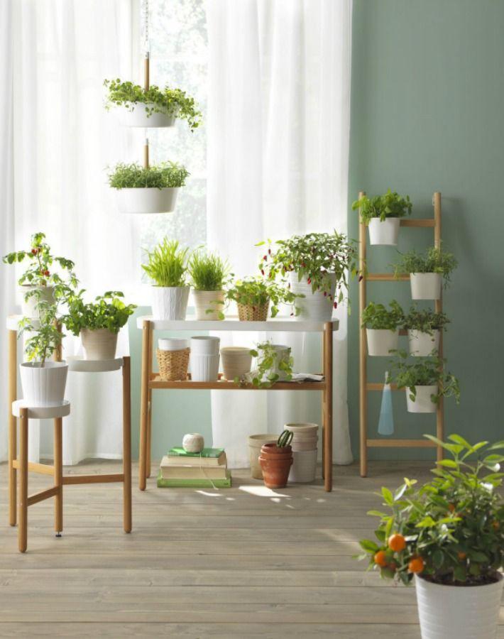 catalogo ikea plantas