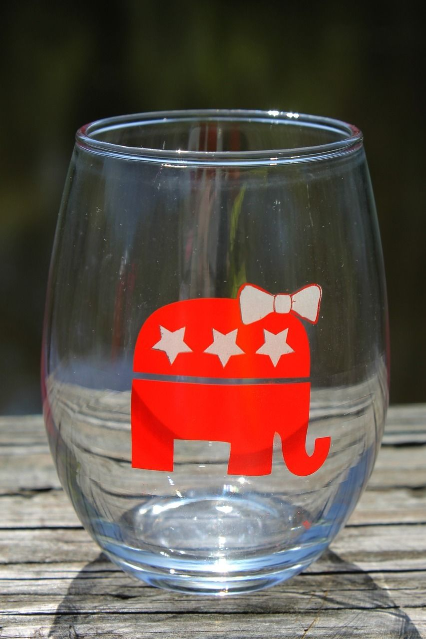 What a better way to celebrate the GOP winning over the Senate and House in the midterm elections than enjoying some wine with this cute glass? Use discount code MaddieKing10 to receive 10% off your order!