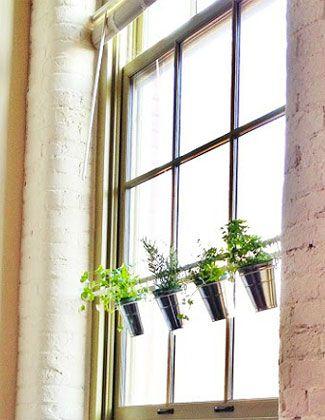 Hanging Plant Holder Window