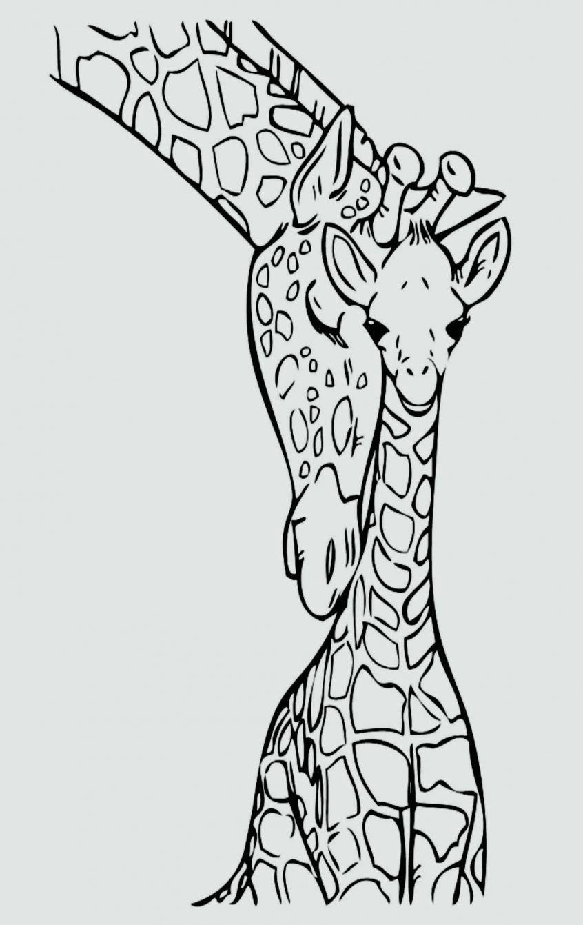 Jungle Printable Coloring Pages Giraffa Disegni Da Colorare