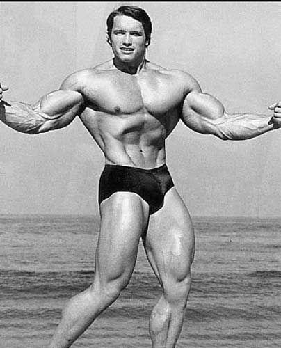 A4 A3 A2 Sizes Arnold Schwarzenegger Arnie Body Building Poster
