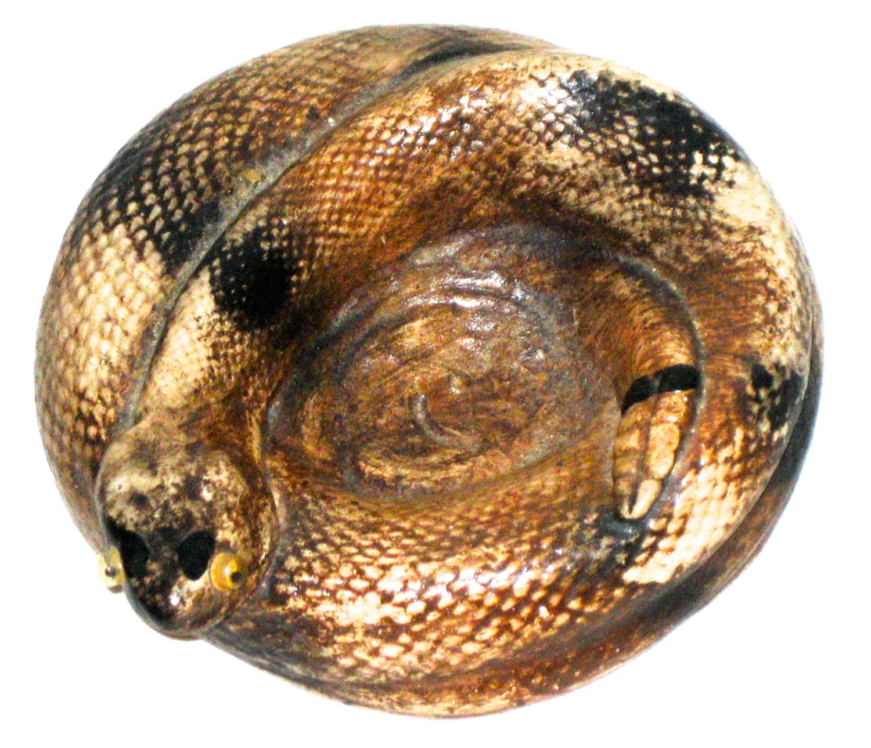 Vintage plaster rattle snake souvenir shop carnival prize dish by sweetalicelovesyou on Etsy