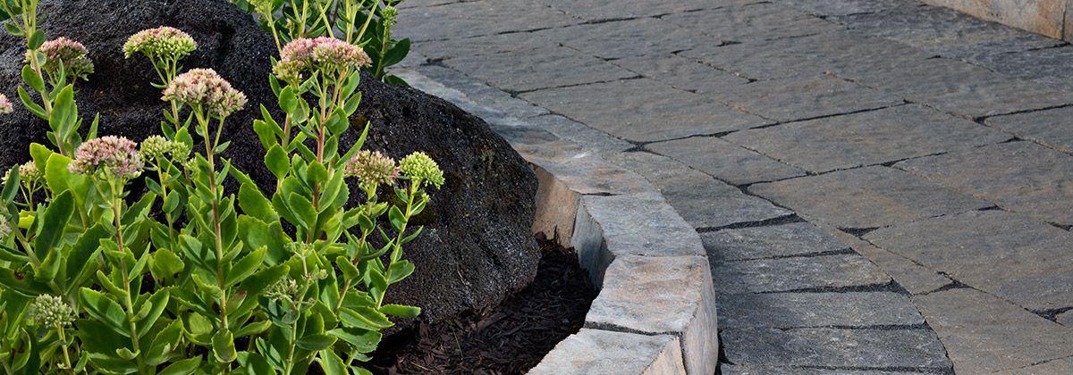 Anglia Edger Plants, Backyard, Paver sealer