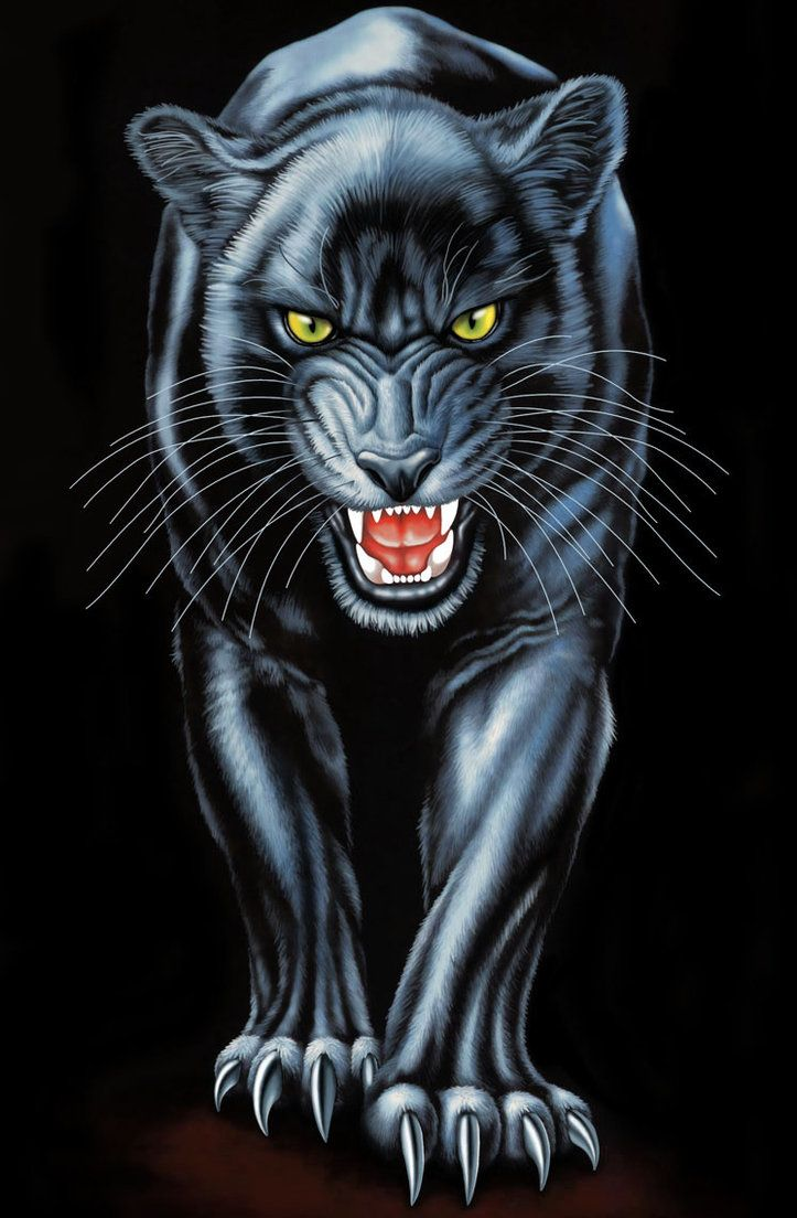 Art Black Panther Animal Wallpaper