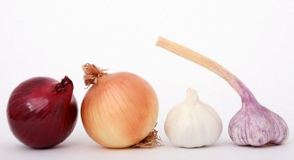 Garlic and Onion for Hair Growth?