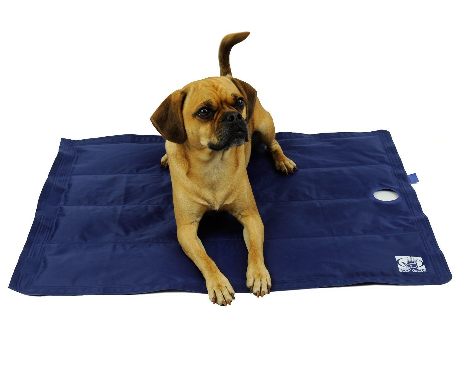 Body Glove Cat Cooling Mat Wow I Love This Check It Out Now