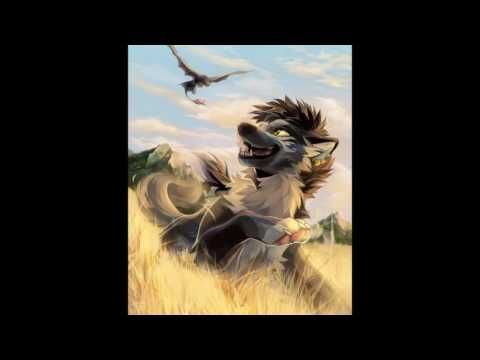 Photo of Anime wolf- Where no one Goes – YouTube