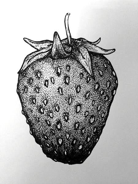 Image Result For Easy Pointillism Black And White Noktacilik