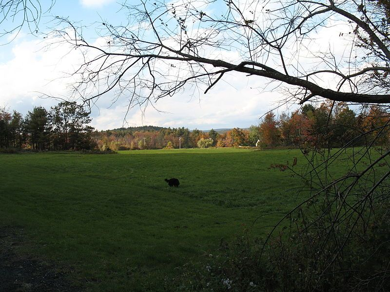 Filefields at platt hill state park 01jpg state parks