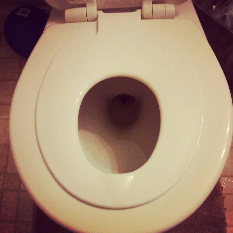 Terrific Potty Seat Built Into The Toilet Seat Removable And The Gmtry Best Dining Table And Chair Ideas Images Gmtryco