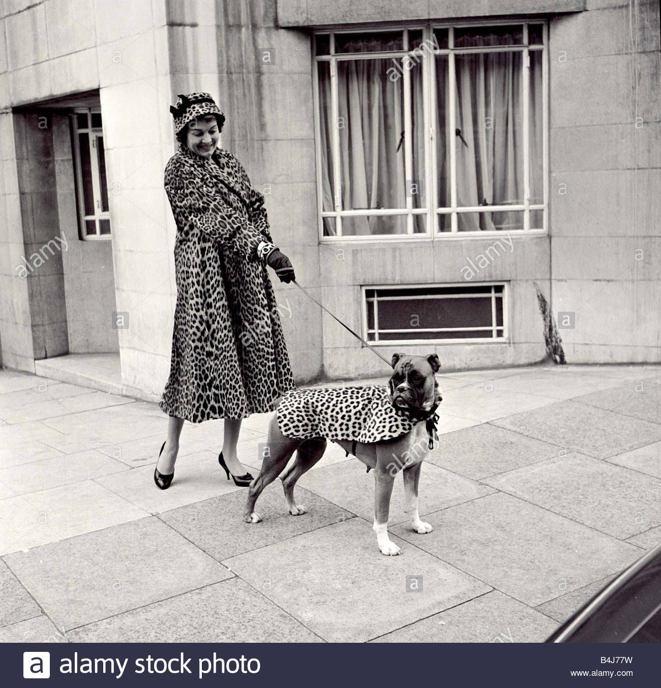 Fur Coats For Dogs Lady And Her Boxer Dog Wearing Matching Fur