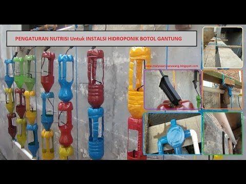 Cara Mengatur Sistem Nutrisi Hidroponik Botol Gantung