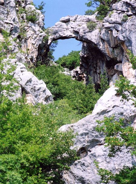 Suplja Greda Tree Bridge Is Reportedly The Largest Arch In Croatia With An Estimated Span Of 40 Feet Places To Go Most Beautiful Places Around The Worlds
