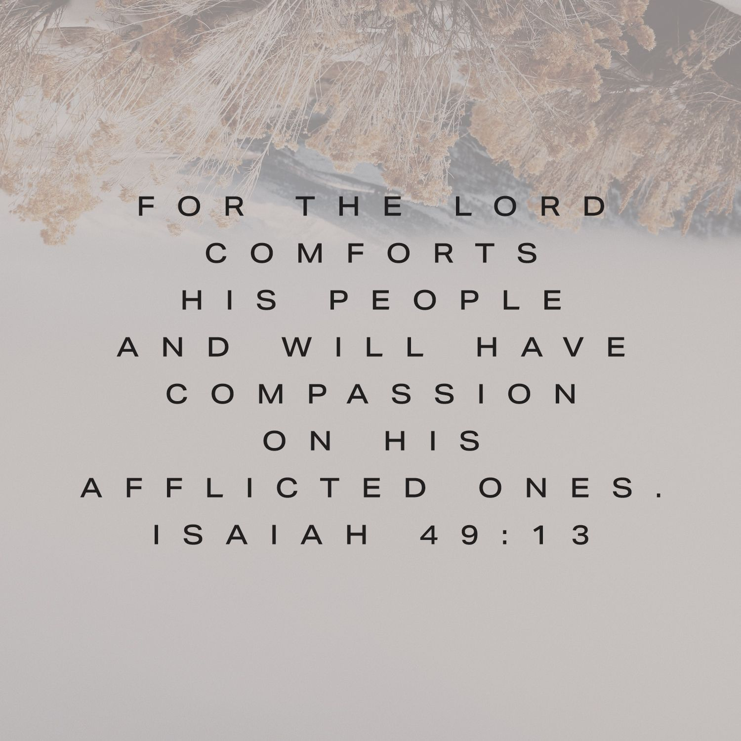 The Lord Will Comfort Those Who Are Afflicted Let Him Comfort You