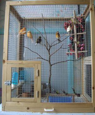 comment faire une cage a oiseaux. Black Bedroom Furniture Sets. Home Design Ideas