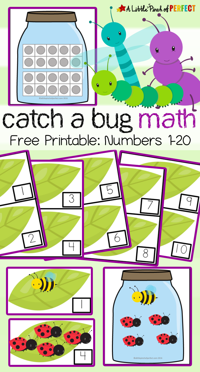 Catch a Bug Math Activity and Free Printable - | Math activities ...