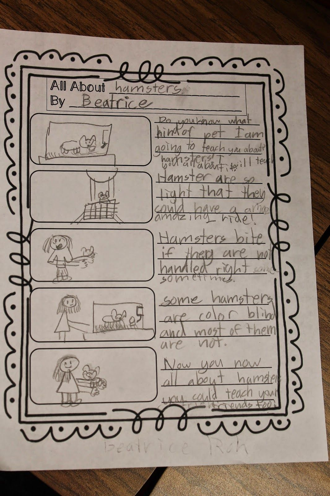 First Grade Wow Little Authors Expository Writing Plans