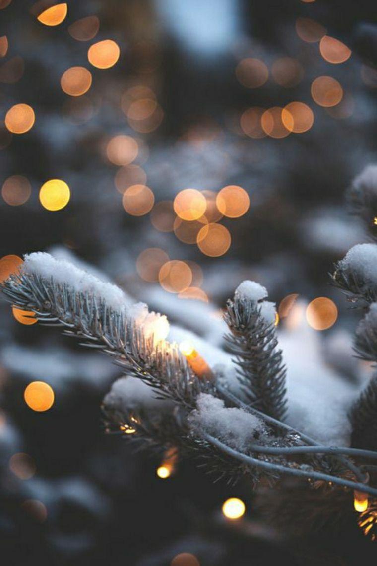 Paisajes Hermosos Y Citas De Invierno Que Te Haran Sumergirte En