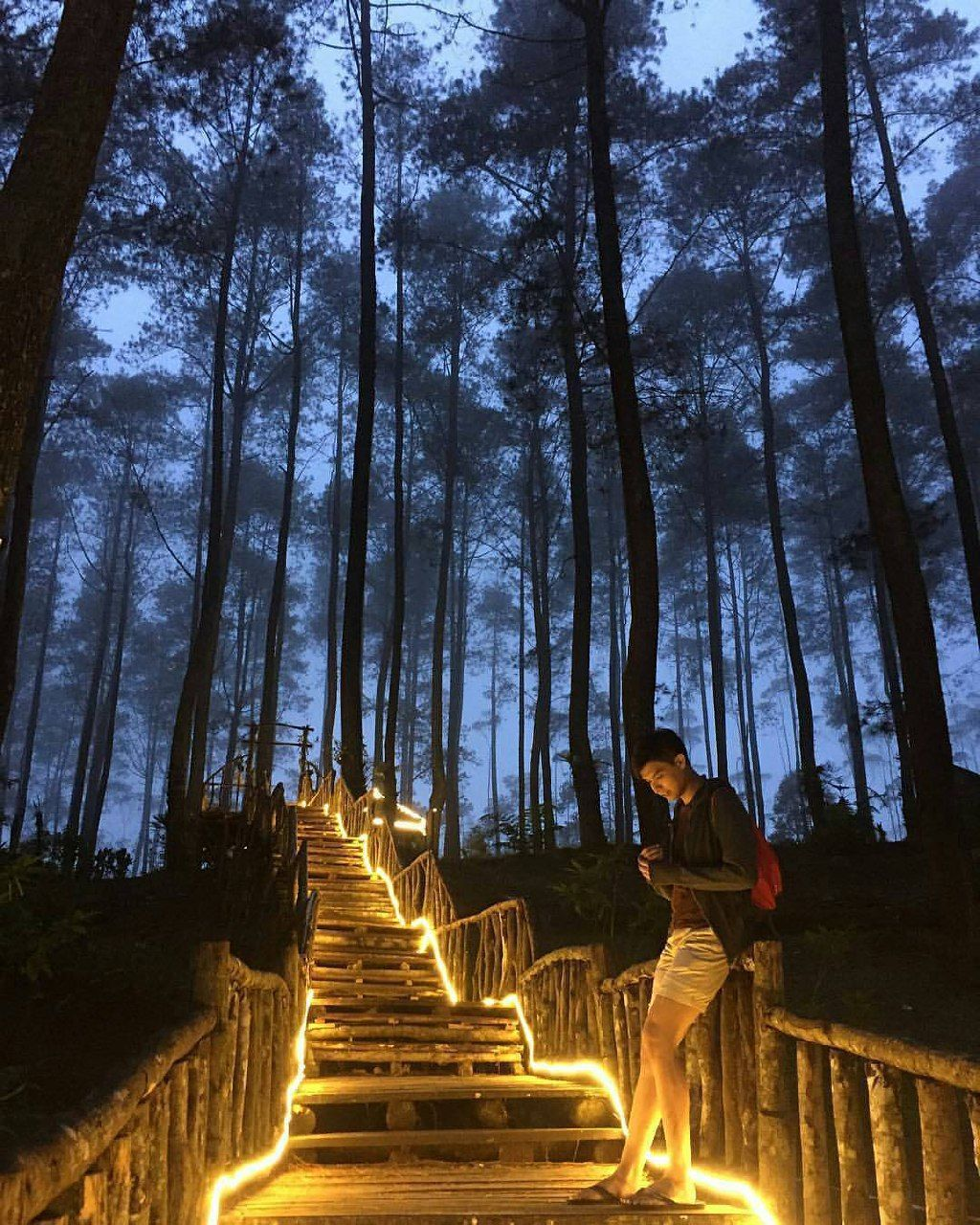 Orchid Forest Lembang has many instagramable spots that
