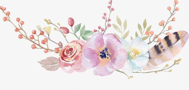 Bohemia Watercolor Flower Png Transparent Clipart Image And Psd