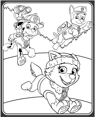 Everest, Marshall and Chase Coloring page | Paw patrol ...