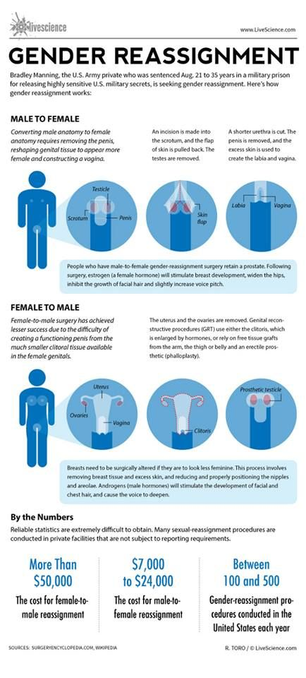 gender reassignment procedure summary dont assume that