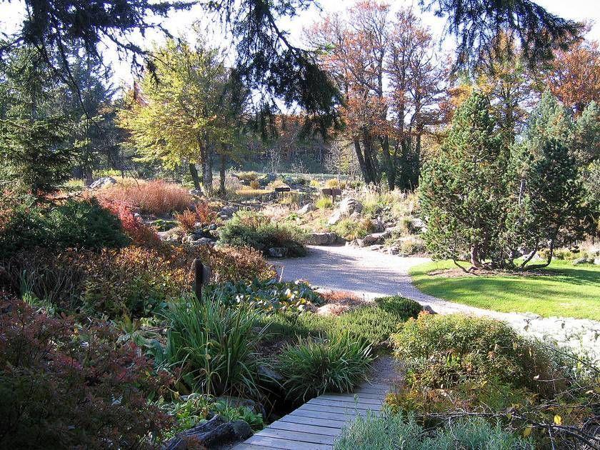 Jardin d 39 altitude du haut chitelet xonrupt longemer dans - Jardin d altitude du haut chitelet ...