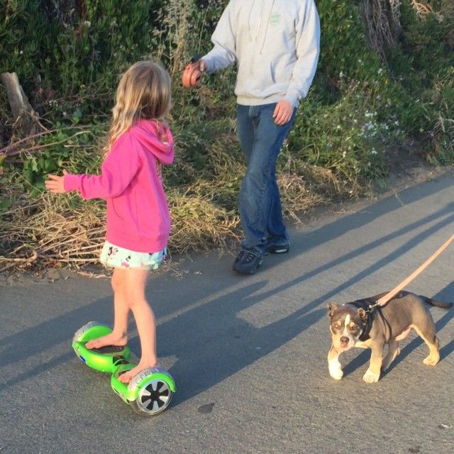 Two Wheel Self Balancing F Wheel Electric Unicycle Mini Two Wheel Self Balancing Electric One Wheel Self Balancin Hoverboard Girl Hoverboard Girl And Dog