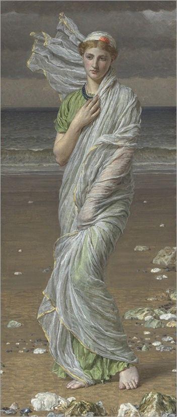 Seashells – Albert-Moore