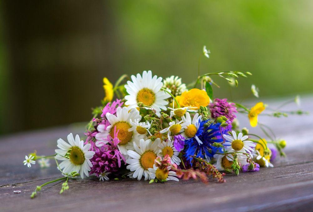 Wiesenblumen im Mai von naturefan  Hochzeitsdeko in 2019