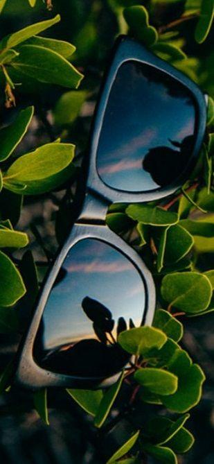 Sierra Bamboo Sunglasses