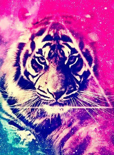 cool wallpapers colorful tumblr - Buscar con Google   My furry ...