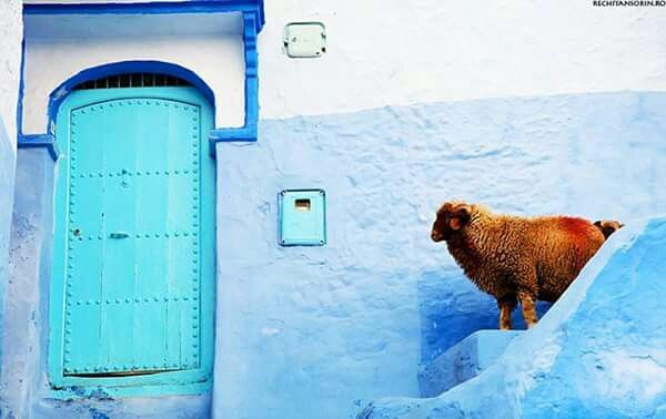 Moroco