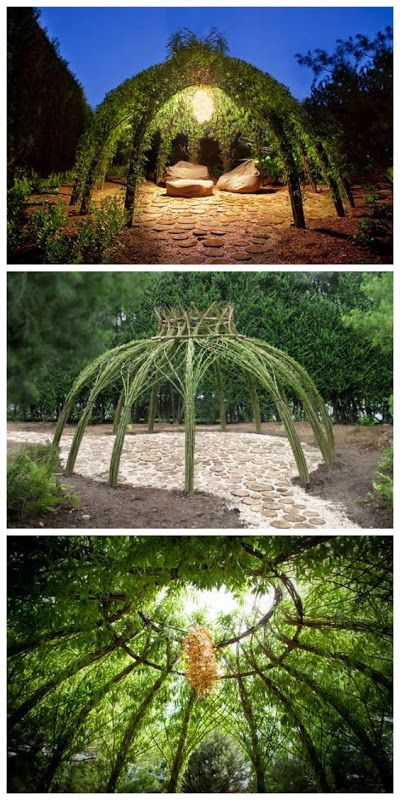 all-garden-world: Living willow structure