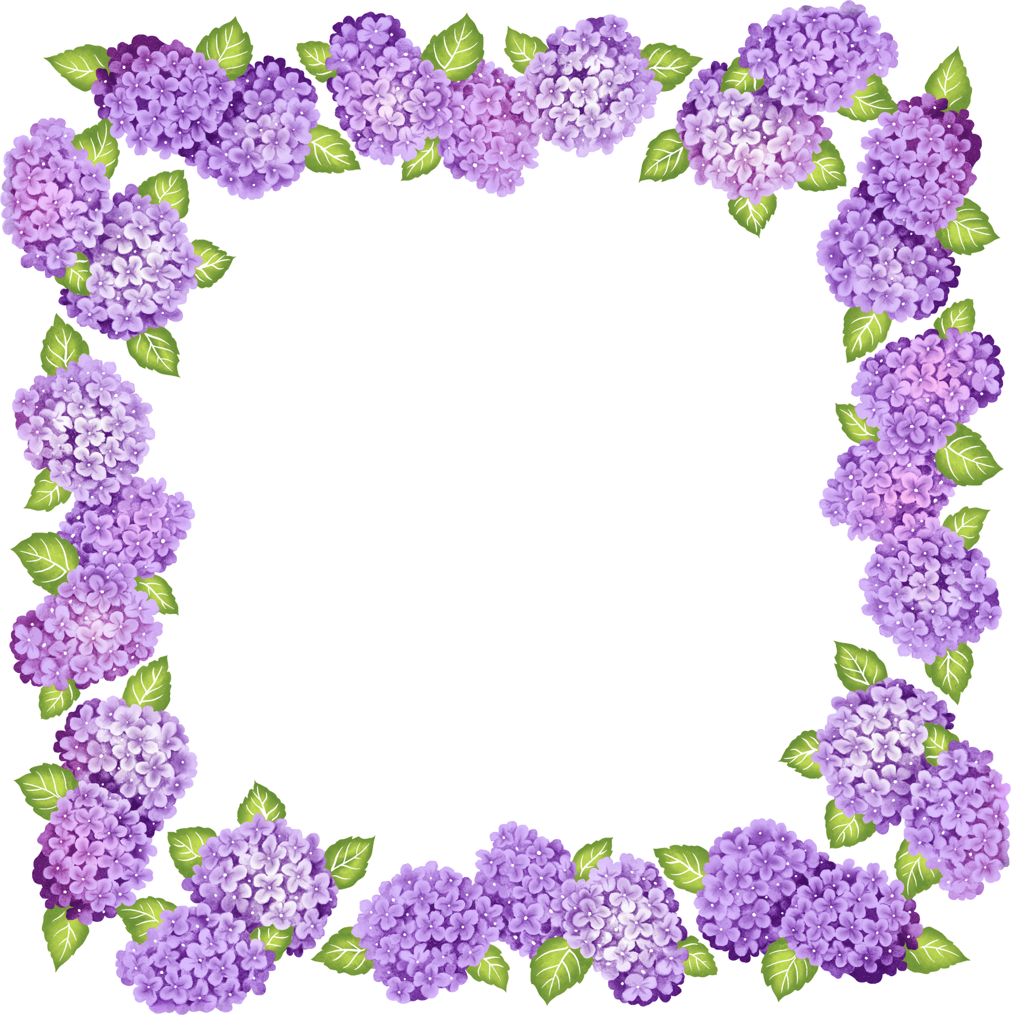 Transparent Purple Frame Purple Frame Polyvore Edits