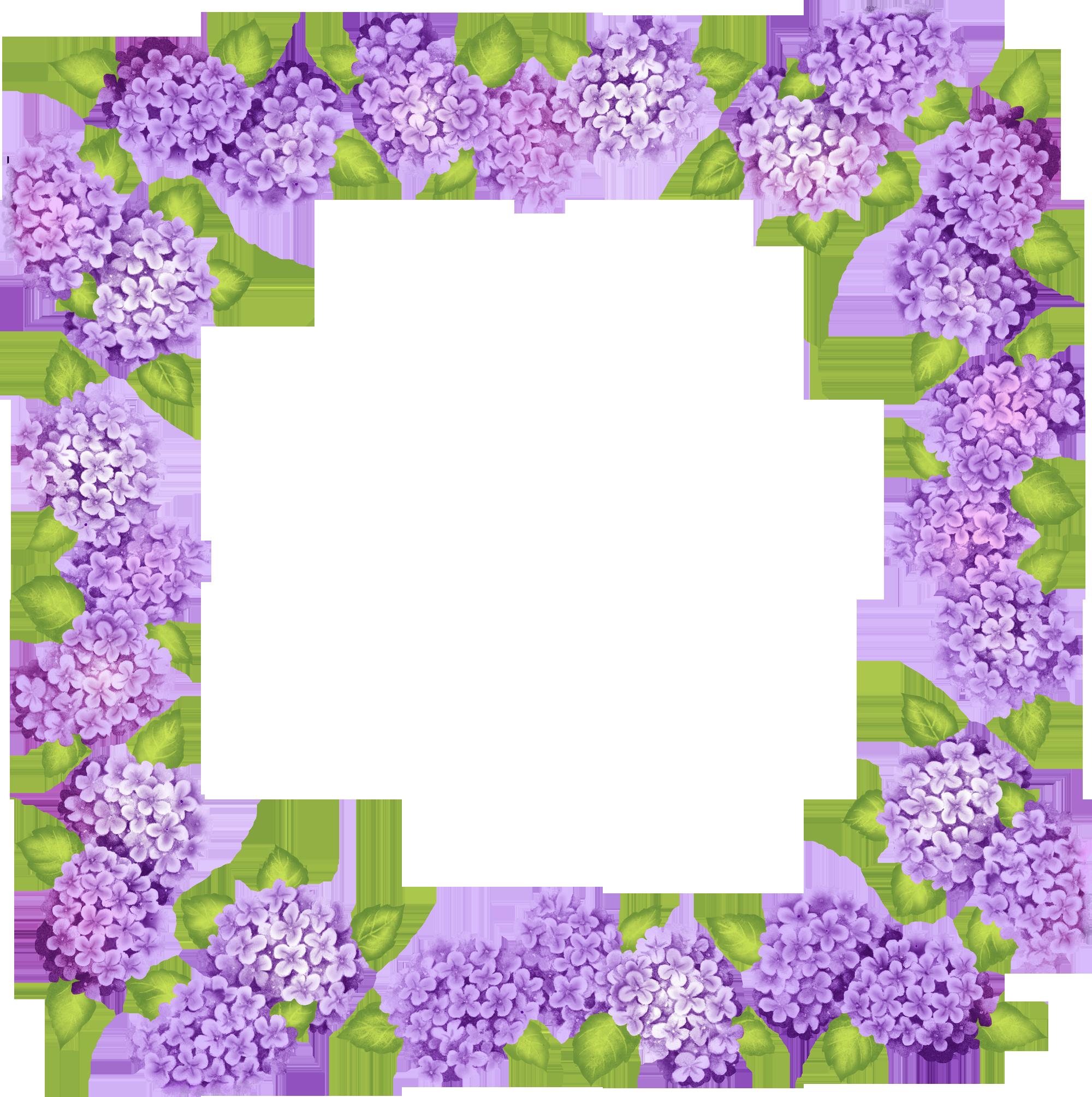 Cute Transparent Purple Flowers Frame Flower Prints Framed Flower Frame Purple Flowers