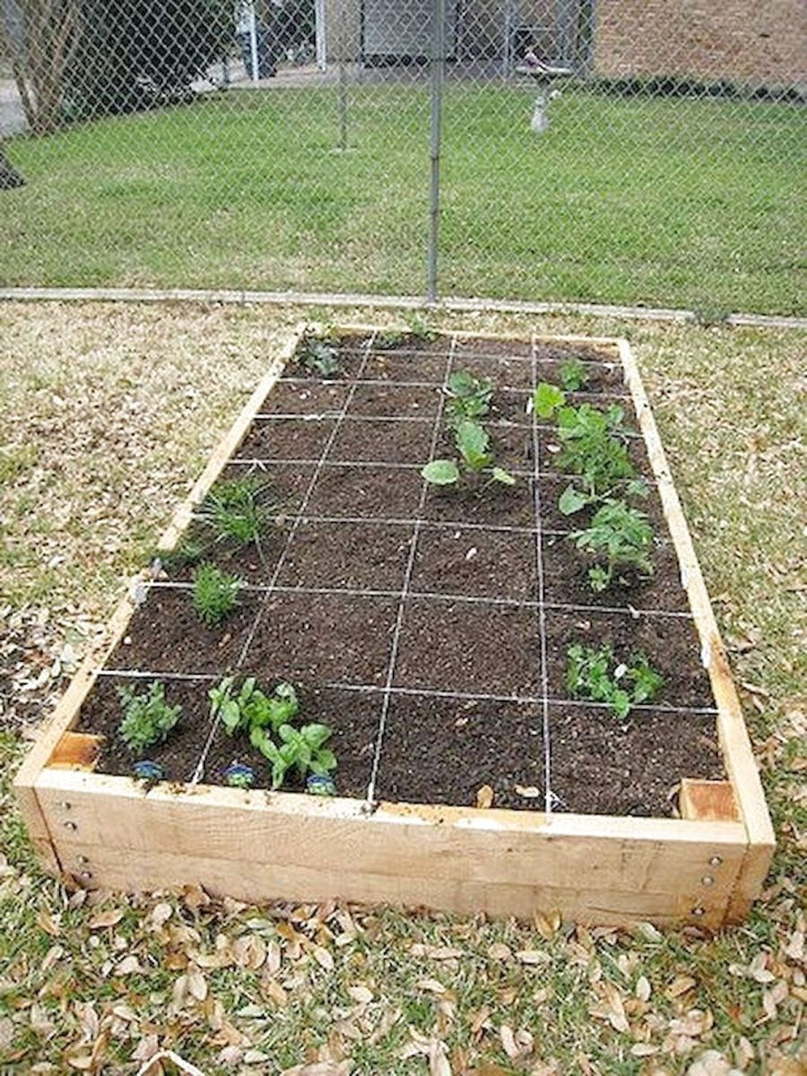 62 Favourite Vegetable Hydroponic Garden Ideas And Decoration