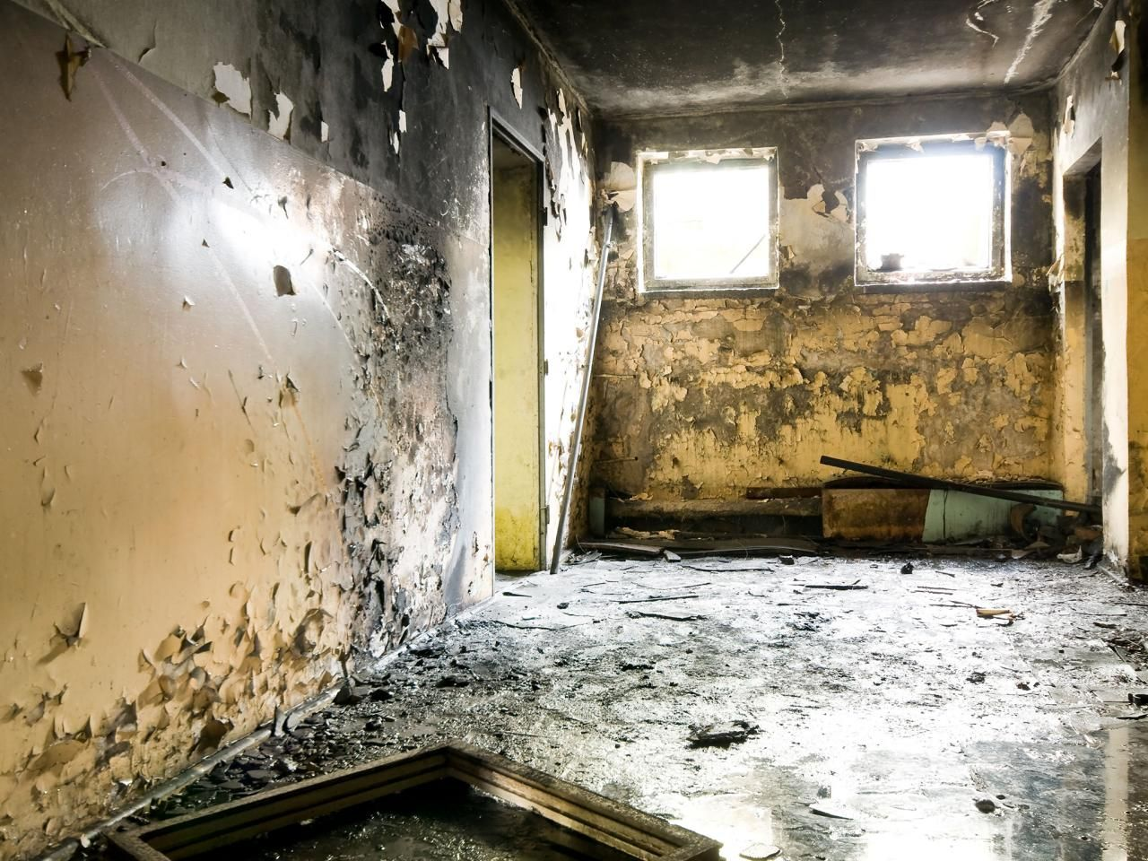 Black Mold Symptoms and Health Effects Black mold