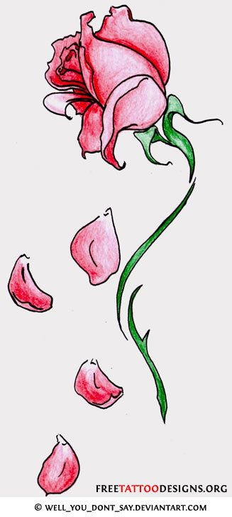 Flower Petals Line Drawing : Fallen rose petal tattoos tattoo designs to enlarge