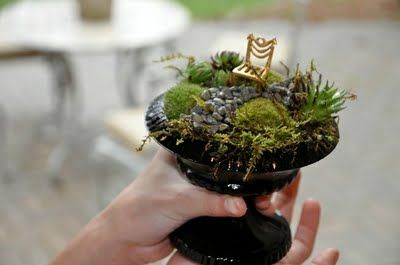 Cute Little Garden Pot