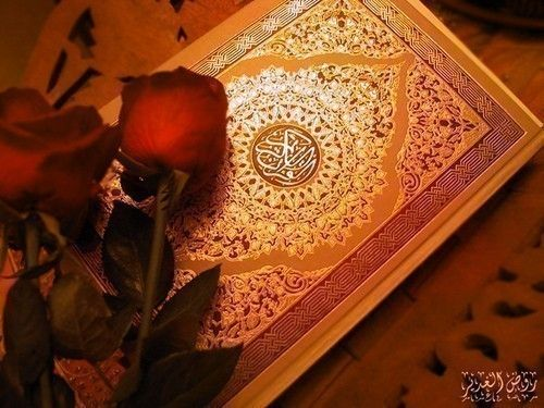 Photo of Gemeinsam lernen um Allahs willen: Koranheim, zuerst …