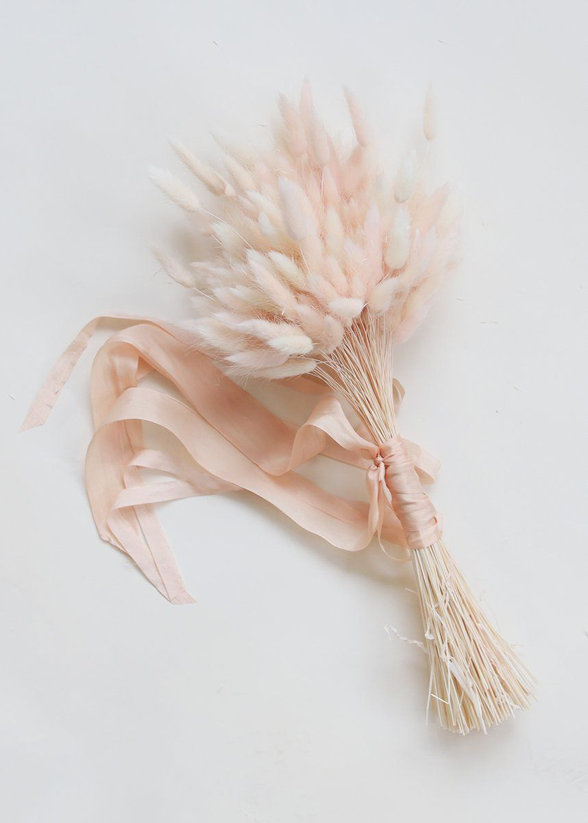 Art Deco Stil Duden Blush Pink Dried Bunny Tail 2oz Bunch 27 In 2019 Dried